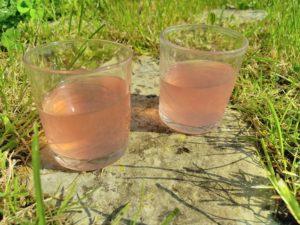 Verres d'eau de rhubarbe